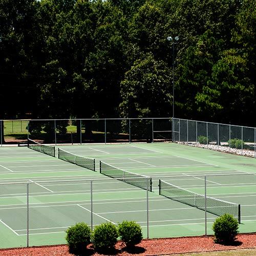 Tennis answer: CAMPI