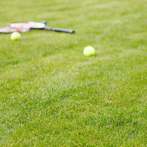 Tennis answer: TENNIS SU ERBA