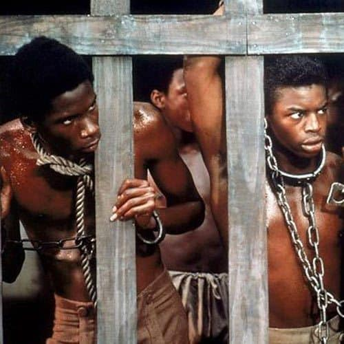 TV Shows answer: ROOTS